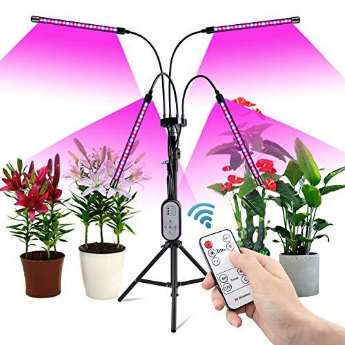 Pflanzenlampe LED, 80W Grow Light mit Ständer Tripod, 4 Heads Planzenlicht mit timer 4/8/12H, Grow Lampe Vollspektrum 360°Einstellbar Schwanenhals & Tripod für All Indoor Plants