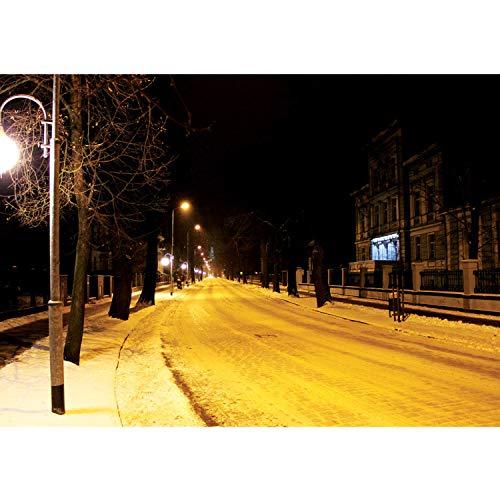 Vlies Fototapete PREMIUM PLUS Wand Foto Tapete Wand Bild Vliestapete - Winter Schnee Laterne Nacht Bäume - no. 2972, Größe:254x184cm Vlies