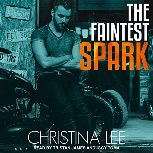 The Faintest Spark audiobook cover art