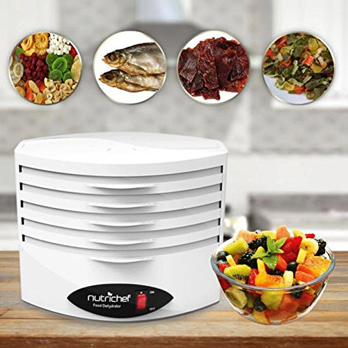 Best Buy! Electric Countertop Food Dehydrator Machine - 5-Tray Professional Electric Multi-Tier Hang...