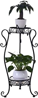 Juesi Metal 2 Tiers Plant Stand, Indoor Floor Model Potted Plant Bonsai Display Rack Balcony Pot Planter Organizer for Garden Home Decor 13.8 x 26.4 x 7.9 Inch