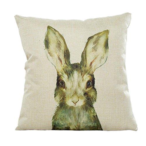 Sunnywill 45cm*45cm niedliche Tier Kissenbezug Sofa Taille werfen Home Decor (Kissen ist Nicht im Preis inbegriffen) (F) (F)