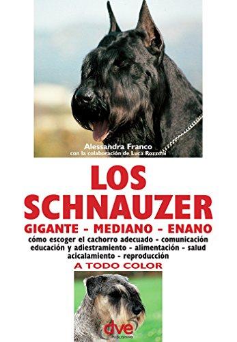 Cachorro Schnauzer