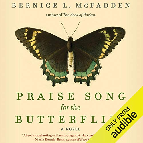 Praise Song for the Butterflies audiobook cover art