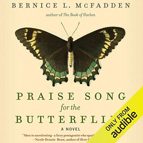 Praise Song for the Butterflies: A Novel