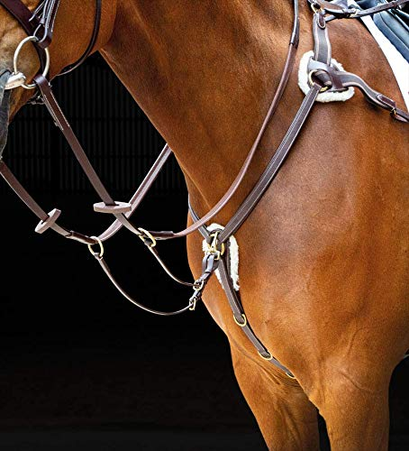 (Havana, Full) - Shires Salisbury 5 Five Point Leather Breastplate