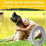 IMG-1 collare antipulci cane impermeabile collari