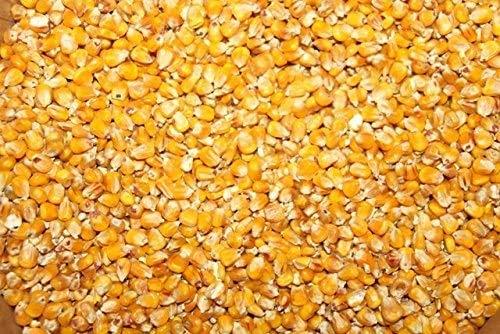 25kg Mais gelb