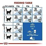 Royal Canin 55168 Indoor Katzenfutter - 6