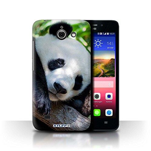 Hülle Für Huawei Ascend Y550 LTE Wilde Tiere Pandabär Design Transparent Ultra Dünn Klar Hart Schutz Handyhülle Hülle