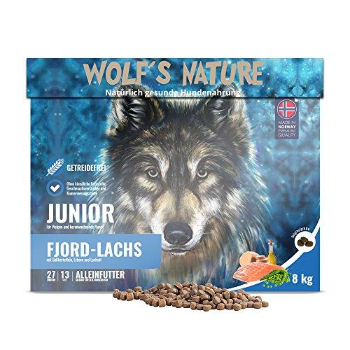 Wolf's Nature Getreidefreies Trockenfutter aus Norwegen in Lebensmittelqualität (Lachs - Junior, 8 kg)