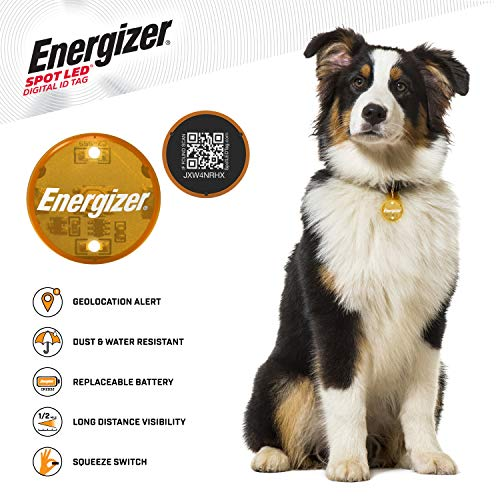 SPOT LED Energizer Digital Pet QR Recovery ID Tag, IP65 Water and Dust Resistant with Half Mile Visibility, Orange (94574)