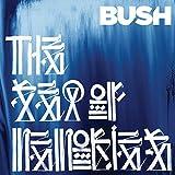 The Sea of Memories - Bush