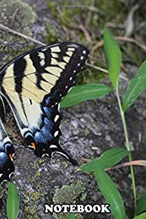 """Notebook: Beautiful Capture Of An Eastern Tiger Swallowtail Butte , Journal for Writing, College Ruled Size 6"""" x 9"""", 110 P..."""