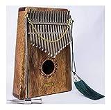 Pollice a 17 tasti con istruzioni per l'apprendimento e accordatoreYLXBH
