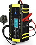 HAUSPROFI Car Battery Charger, 12V/24V 8Amp Automatic Battery Charger with 3-Stage Charging, 6 Charging Mode and LCD Screen, Intelligent Charges, Repairs, Maintains Car Motorcycle Boat Mower Battery
