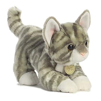 Aurora - Miyoni - 9  Grey Tabby Kitten
