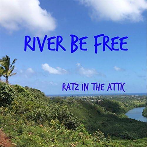 Ratz in the Attic