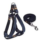 Perro acolchada ajustable arnés de seguridad y correa Set no Tire fácil caminar fuerte Denim chaleco Cable para pequeño mediano y grande perro gato formación a pie