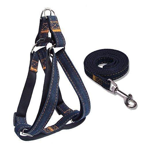 Perro acolchada ajustable arnés de seguridad y correa Set