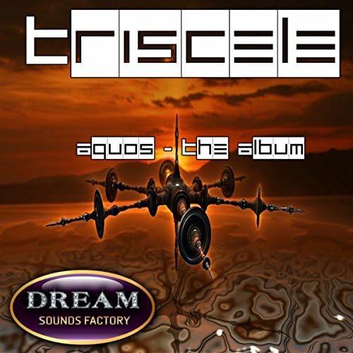 Triscele