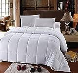 Royal Hotel Twin/Twin XL Size Down-Alternative Comforter - Duvet Insert,...
