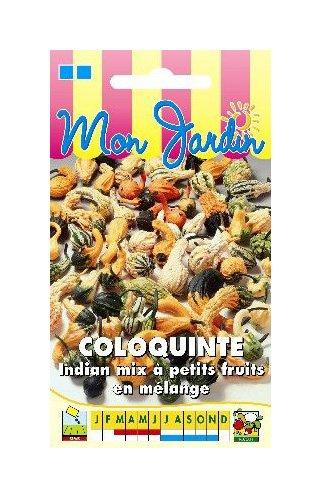Les Graines Bocquet - Graines De Coloquinte Indian Mix Petits Fruits - Graines Potagères À Semer - Sachet De 3Grammes