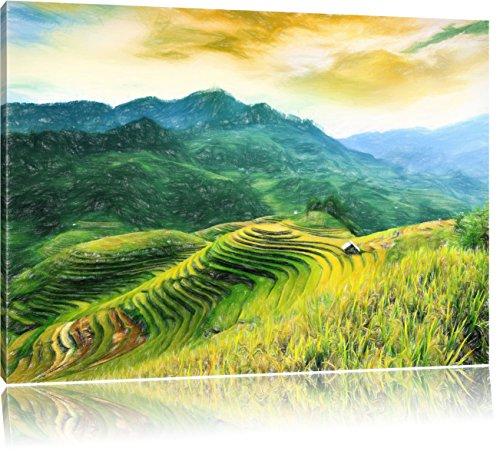 Pixxprint Reisfelder in Vietnam als Leinwandbild | Größe: 80x60 | Wandbild| Kunstdruck | fertig bespannt
