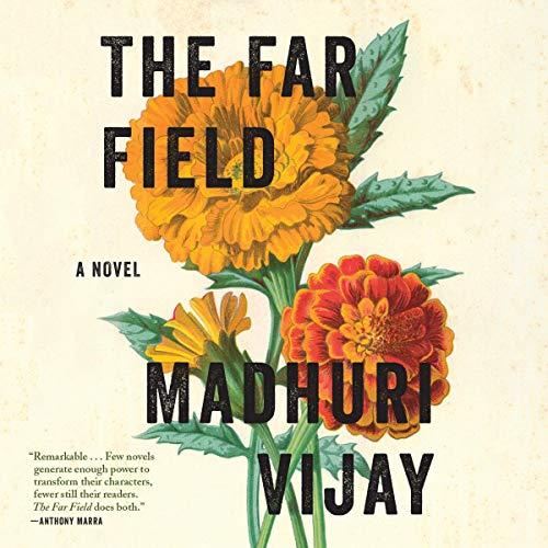 The Far Field: A Novel