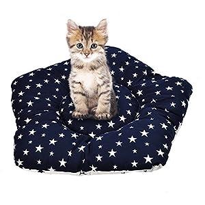 Miyare amovible et lavable Spire étoile pour animal domestique Chenils pour animal domestique Maison de jeu Tente de jeu pour chien chat/chien