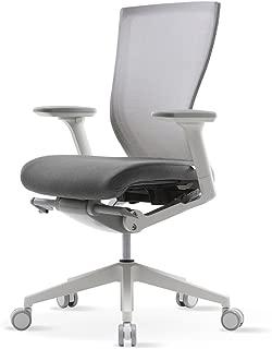 SIDIZ T50 Home & Office Multifunction Ergonomic Swivel Task Chair (TNB500DA): High Back, Mesh Back, 3-Way Adjustable Arms, Adjustable Seat Slide/Slope (Gray)