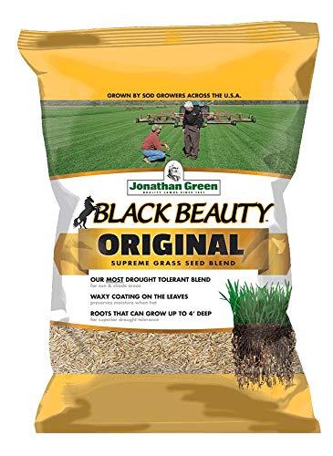 Jonathan Green 10316 Black Beauty Grass Seed, 50-Pound