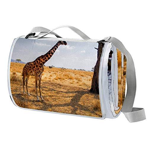 TIZORAX Picknickdecke mit Afrika-Giraffe auf Grasland, wasserdicht, faltbar, für Strand, Camping, Wandern