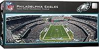 MasterPieces NFL Philadelphia Eagles Stadium Panoramic Jigsaw Puzzle, 1000 Pieces