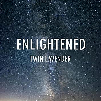 Twin Lavender
