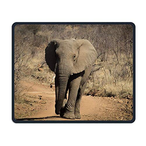 Mausemat Wild Africa Elephant.Jpeg Fun Mousepad Premium Rubber Customized 25X30M Non-Slip Mouse Mat With Stitched Edges Gaming Mouse Pad Oblong For Laptop Computer And PcT