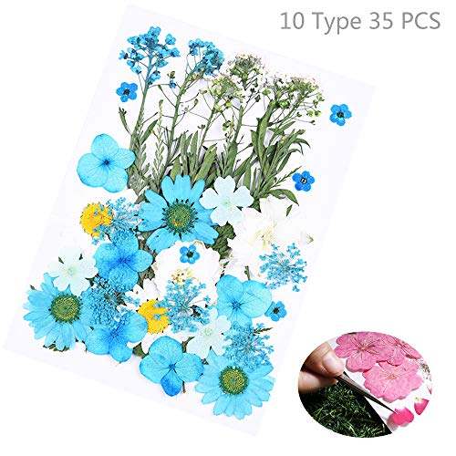 E TTO Natural Real Dried Flower Kit for Art Craft Soap Candle Scrapbooking DIY Resin Jewelry Making,Mixed Multiple Assorted Dried Flowers for Home Decoration
