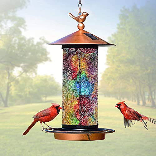 XDW-GIFTS 2020 Newest Solar Wild Bird Feeder Hanging & XDW-GIFTS Double Shepherds Hooks for Outdoor, 92 Inch Heavy Duty Two Sided Garden Pole