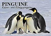 Pinguine - Kaiser- und Koenigspinguine (Wandkalender 2022 DIN A2 quer): Im Sonntagsfrack durch Eis und Schnee (Geburtstagskalender, 14 Seiten )