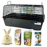 DZL- Jaula para Conejos/cobayas Cierre de Seguridad Jaula casa para Animales pequeños Jaula Conejos con Comida/Heno/Bebedero/alimentador (Aleatorio)