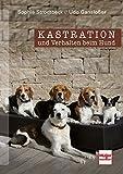 Kastration und Verhalten beim Hund