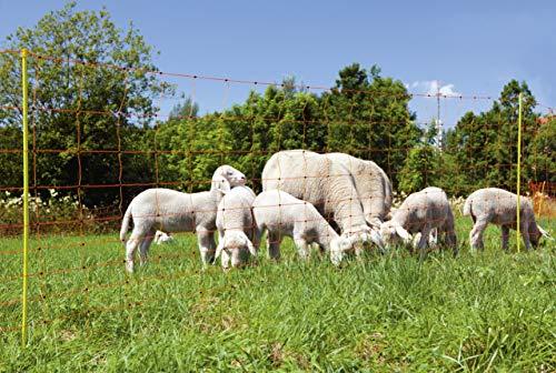 VOSS.farming Schafzaun 90cm Classic 50m | Schafnetz Ziegenzaun Elektronetz | 14 Pfähle 2 Spitzen | Orange - 3