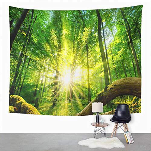 Y·JIANG Arazzo Tranquil Scenery in Green Forest The Sun Casting Incantevole Home Dormitorio Decorativo Grande Arazzo Da Parete Coperta Da Appendere Per Soggiorno Camera Da Letto 203,2 x 152,4 cm