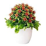NAttnJf 1 Unid Artificial Chorisia Speciosa Planta de...