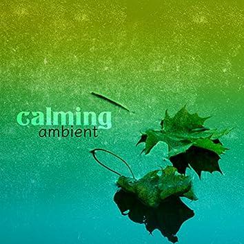 Calming Ambient
