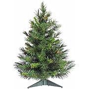 Vickerman Cheyenne Tabletop Tree, 24-Inch, Pine Green