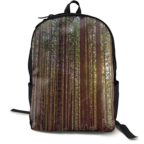 Casual Daypack Large Capacity Multipurpose Anti-Theft Bookbag Backpack for High School Outdoors Running - Nature Redwood Forest In California, Travel Hiking Backpack