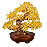 Árbol del dinero bonsai feng shui Cristal del árbol del di