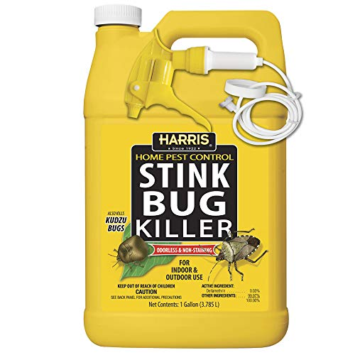 Harris Stink Bug Killer, Liquid Spray with Odorless and Non-Staining Formula (Gallon)