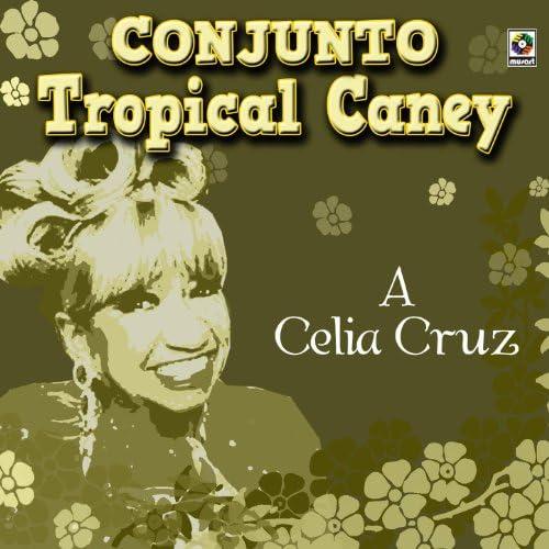 Conjunto Tropical Caney